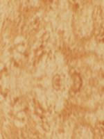Birds-Eye-Maple