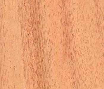 Golden-Cedar