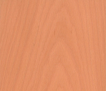 Steam-Beech-Veneer