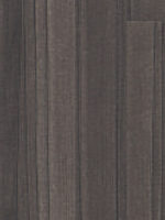 8131SF-RUSSIAN-TINEO-DARK