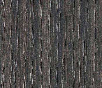 Eucalipto California 4602 ALV