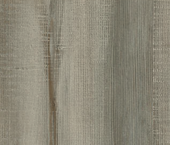 84-Karmel-Pine