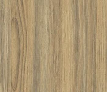91-Silky-Oak